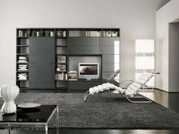 modular furniture living room designs wall units easy on eye
