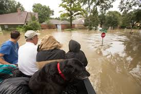 monster truck shows in texas in harvey swamped houston rescues by canoe kayak u2014 even monster