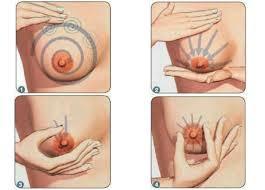 cara pria membesarkan payudara wanita yang kecil aubreybobrey