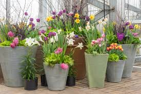 create spring containers that wow espoma