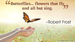 awesomely inspiring butterfly quotes for a great day ahead