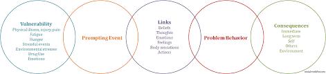 behavior chain analysis