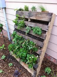 diy vertical pallet vegetable garden pallets vegetable garden