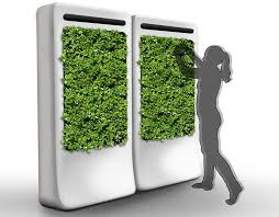 freshwall indoor vertical garden purifies the air while growing