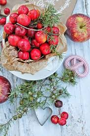 Apple Decorations For The Kitchen by 278 Best Images About Vibeke Design Christmas On Pinterest