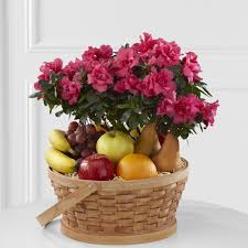 Sympathy Fruit Baskets Sympathy Fruit U0026 Gourmet Gift Baskets Ital Florist