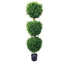 Eugenia Topiary Romano 5 Ft Hedyotis Triple Ball Topiary Tree 50 10007 R The