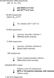 Flag Tag Dna Sequence Bigbac Enables Rapid Gene Assembly For The Expression Of Large