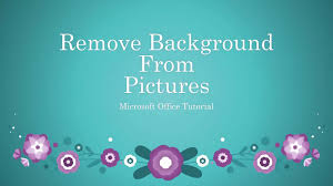 remove background from picture in microsoft office 2016 make