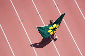How Old Is The Welsh Flag Why The Wattle U2014 The Golden Wattle Flag