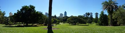 Garden City Medical Centre Brisbane Brisbane City From Qut Botanic Gardens Robotics Qut Confluence