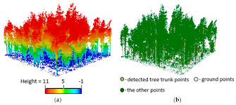 remote sensing free text automatic forest mapping at