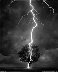 lightning hitting a tree tattoos a tree lightning