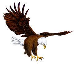 lakes eagles logo