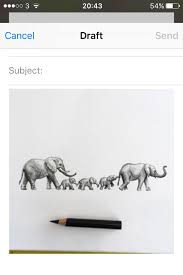 elephant elephant pencil and in color