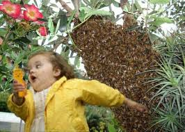 Girl Running Meme - bubble girl bees chubby bubbles girl know your meme