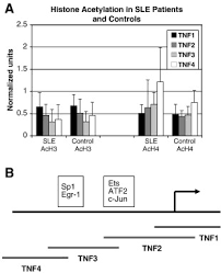 floor plan sle with measurements the tnfα locus is altered in monocytes from patients with systemic