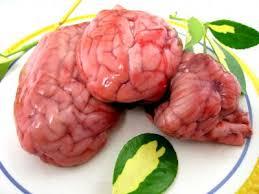 cuisiner de la cervelle de porc cervelle définition et recettes de cervelle supertoinette