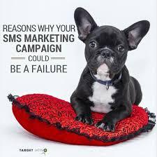 target corp black friday failures 303 best hispanic marketing images on pinterest marketing