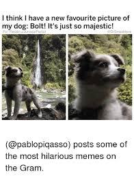 Most Hilarious Memes - 25 best memes about most hilarious memes most hilarious memes