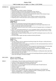 sle resume cost accounting managerial emphasis 13th amendment marketing analyst resume sles velvet jobs