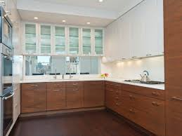 Home Decorators Cabinetry Contemporary Kitchen With Glass Panel U0026 Complex Marble In New York