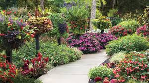 Fall Garden North Texas - 10 best landscaping ideas southern living