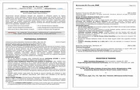 attractive design proffesional resume 16 professional resume
