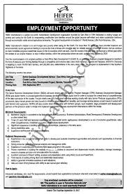 senior business development advisor tayoa employment portal