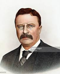 theodore roosevelt president of the united states pictures