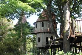 best tree houses images about tree houses ziplines on pinterest treehouse and