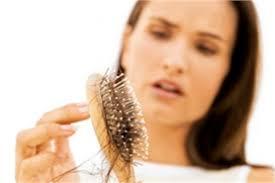 bandage hair shaped pattern baldness hair loss treatment