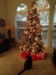 classic christmas 29 best classic christmas trees images on money