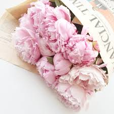 The Pink Peonies by Enormous Bunches Of Peonies Sunday Papers B L O O M S