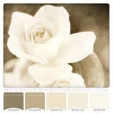 Bathroom Color Palettes 106 Best Color Schemes Images On Pinterest Colors Bathroom