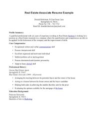 sample resume for real estate agent real estate resume sample 19