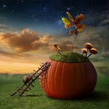 halloween background child marcos gratis para fotos wallpaper para fotomontaje background