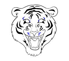 how to draw a tiger in a few easy steps easy drawing guides