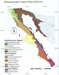 california map desert region notes from south of the border feb 2015