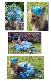 19 best dog costumes images on pinterest dog costumes peacock