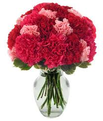 carnation bouquet berry carnations at from you flowers