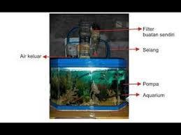 Membuat Filter Aquarium Kecil | tips membuat filter aquarium tanpa kuras air selamanya youtube
