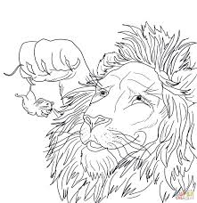 the big lion caught a tiny mouse coloring page free printable