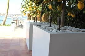 Large Tree Planters by Images About Concrete Planters Wood Trim And With Outdoor Savwi Com