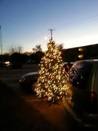 9ft pre lit montana fir tree for sale in hurst tx