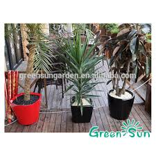 vaso balcony planter box plant tree pot sale buy plant box