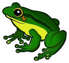 transparent frog clipart clipartxtras