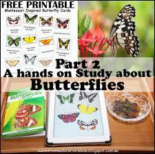 suzie u0027s home education ideas part 2 a hands on study about