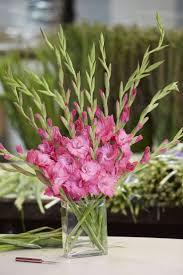 the 25 best gladiolus flower ideas on pinterest gladioli
