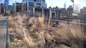 secrets of the high line the nyc public park 30 feet above two nfl football fields in the sky the square footage of